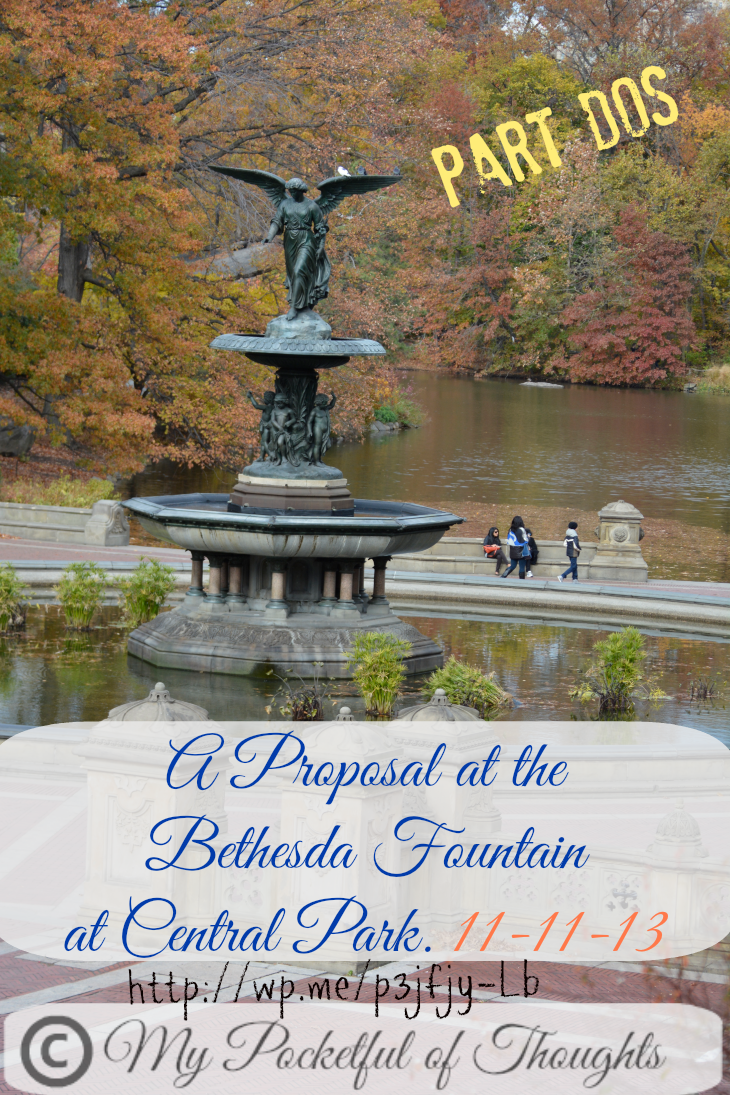 proposal bethesda fountain part 2