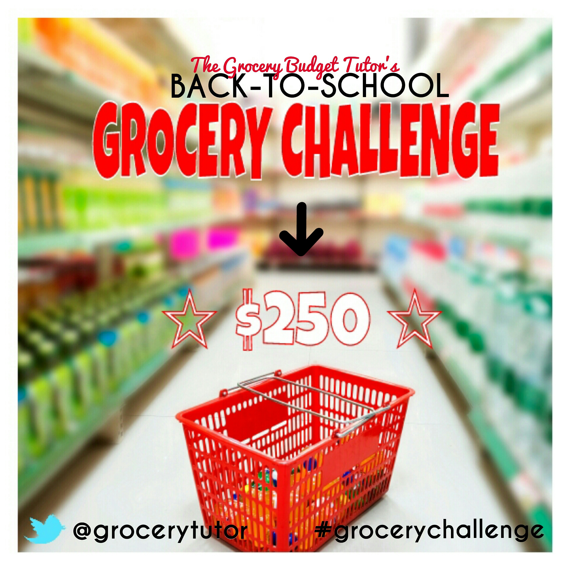 grocery challenge with the Grocery Budget Tutor Amiyrah Martin